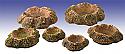 Blast Craters Sci-Fi Scenery Set GRDKNT-002 (6pcs)
