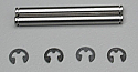 Associated RC10 GT Rear Outer Hinge Pins